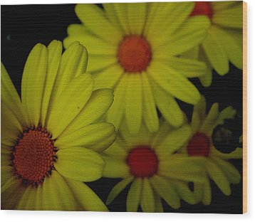 Yellow Flowers Wood Print by Andrea Galiffi