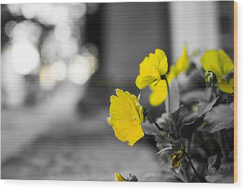 Yellow Flowers Wood Print by Nathan Hillis