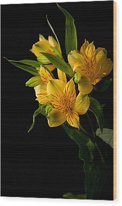 Wood Print featuring the photograph Yellow Flowers by Sennie Pierson