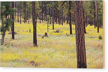 Yellow Forest Wood Print by Kume Bryant