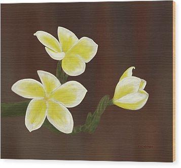 Yellow Frangipani Wood Print by Tim Stringer