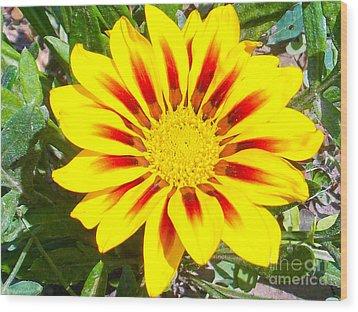Wood Print featuring the photograph Yellow Garden Gerber by Elvira Ladocki