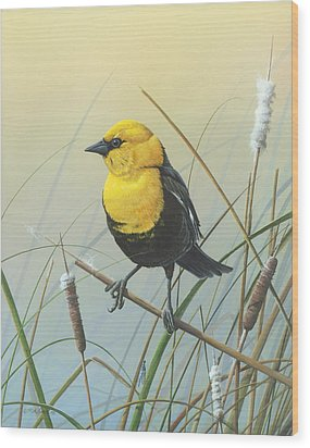 Wood Print featuring the painting Yellow-headed Black Bird by Mike Brown