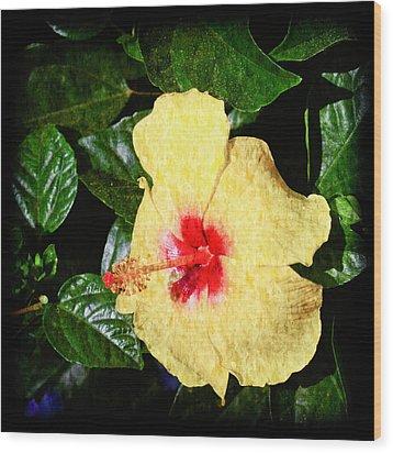 Yellow Hibiscus Wood Print