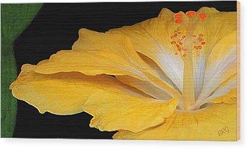 Yellow Hibiscus. Detail Wood Print by Ben and Raisa Gertsberg