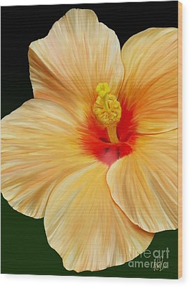 Yellow Hibiscus Wood Print by Rand Herron