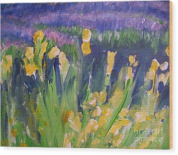 Yellow Iris Wood Print by Eric  Schiabor