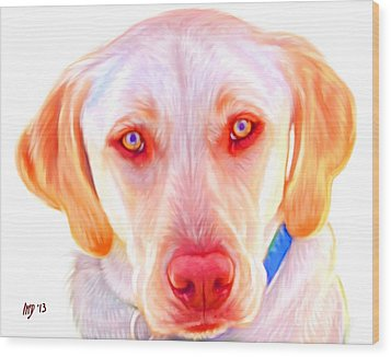Yellow Labrador Dog Art With White Background Wood Print by Iain McDonald
