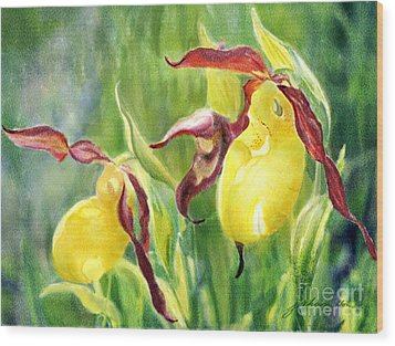 Yellow Lady Slippers Wood Print by Joan A Hamilton