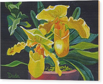 Yellow Lady Slippers Wood Print