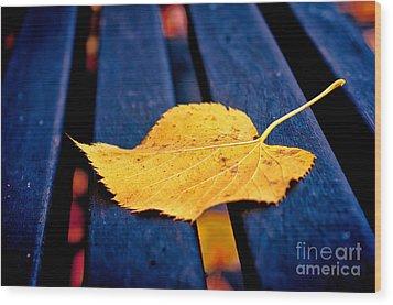 Yellow Leaf On Bench II Wood Print by Silvia Ganora