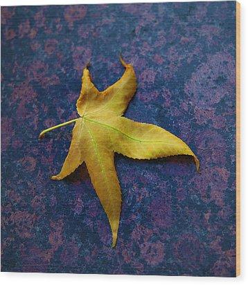 Yellow Leaf On Marble Wood Print by David Davies