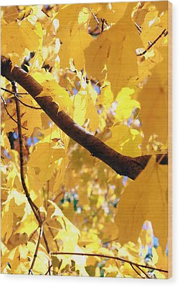 Yellow Leaves Wood Print by Valentino Visentini