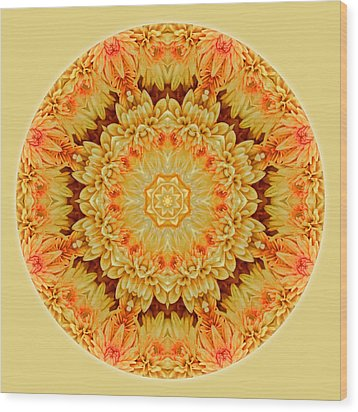 Yellow Orange Mum Mandala Wood Print