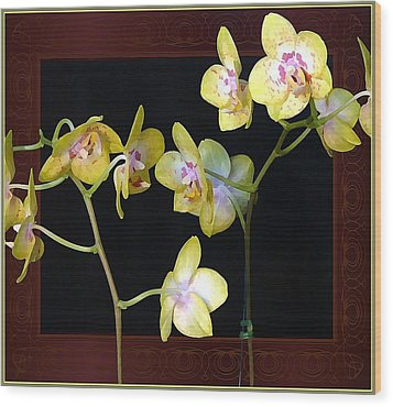 Yellow Orchids Wood Print by Mindy Newman