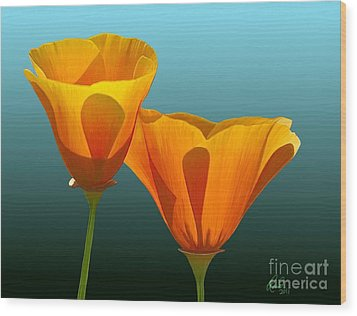 Yellow Poppies Wood Print by Rand Herron