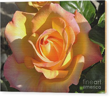 Wood Print featuring the photograph Yellow Rose Bud by Debby Pueschel