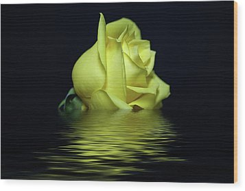 Yellow Rose II Wood Print by Sandy Keeton