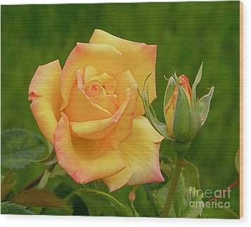Wood Print featuring the photograph Yellow Rose With Bud by Debby Pueschel