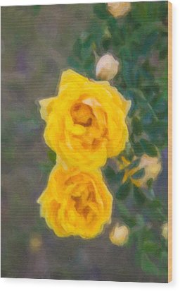 Yellow Roses On A Bush Wood Print by Omaste Witkowski