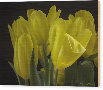 Wood Print featuring the photograph Yellow Silk by Lucinda Walter