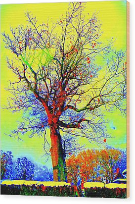 Yellow Sky Wood Print by Jodie Marie Anne Richardson Traugott          aka jm-ART