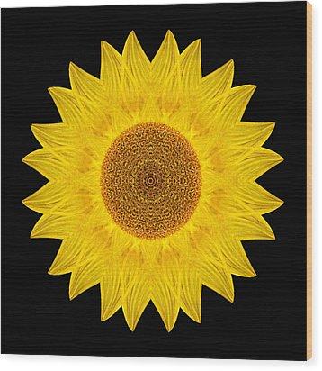 Yellow Sunflower Ix Flower Mandala Wood Print by David J Bookbinder
