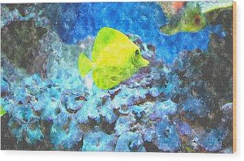 Yellow Tang Of Hawaii Wood Print by Rosemarie E Seppala