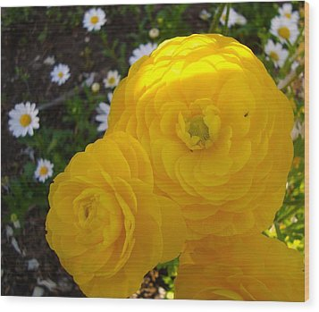 Yellow Trio With Mini Daisies Wood Print by Tamara Bettencourt