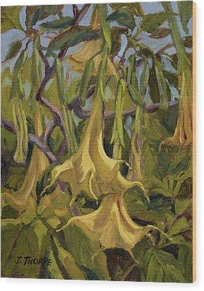Yellow Trumpets Wood Print by Jane Thorpe