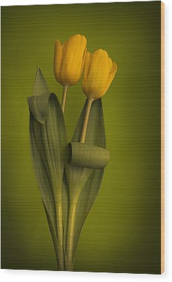 Yellow Tulips On A Green Background Wood Print by Eva Kondzialkiewicz