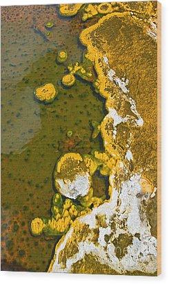Yellowstone Abstract Wood Print by Jamie Pham