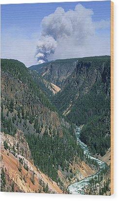 Yellowstone Afire Wood Print by Sandra Bronstein