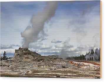 Yellowstone Castle Geyser Wood Print by Leslie Kirk