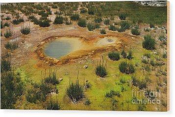 Yellowstone Hot Pool Wood Print by Ausra Huntington nee Paulauskaite