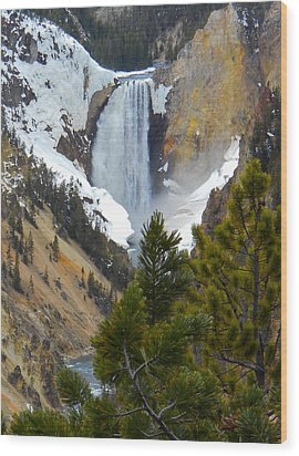 Yellowstone Lower Falls In Spring Wood Print by Michele Myers