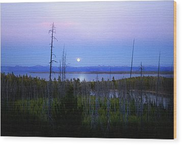 Wood Print featuring the photograph Yellowstone Moon by Ann Lauwers