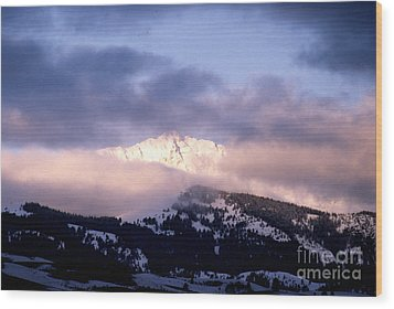 Wood Print featuring the photograph Yellowstone Morning by Sharon Elliott
