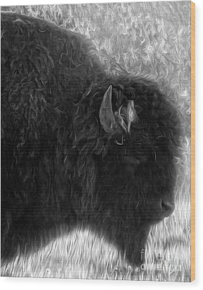 Yellowstone National Park Bison - 02 Wood Print by Gregory Dyer
