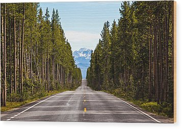 Yellowstone Open Road Wood Print by Adam Pender