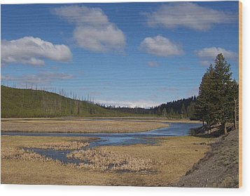 Yellowstone Park 2 Wood Print