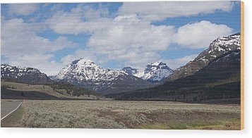 Yellowstone Park Wood Print