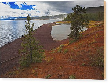 Wood Print featuring the photograph Yellowstone Park Usa by Richard Wiggins