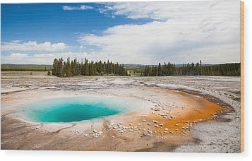 Yellowstone Prismatic Spring Wood Print by Adam Pender