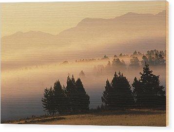 Yellowstone Sunrise Wood Print by Steve Archbold