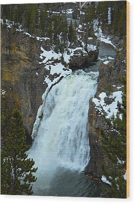 Yellowstone Upper Falls In Spring Wood Print by Michele Myers