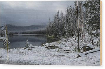 Yellowstone Winter Wood Print by Diane Mitchell