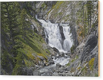 Yellowstone's Mystic Falls With Spring Flowers Wood Print by Bruce Gourley
