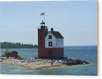 Wood Print featuring the photograph Yes Michigan by Debra Kaye McKrill