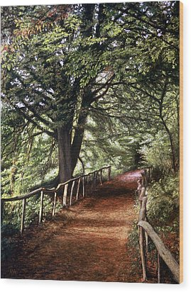 Yockletts Bank Wood Print